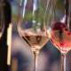 Wine tasting during Bernard Magrez reception